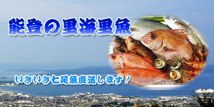 七尾湾と能登島の風景とうまい魚の詰め合わせ